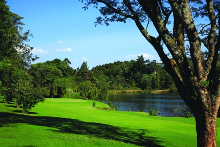 Limuru Country Club. This what the boys want to have to themselves (Photo Phil Inglis).